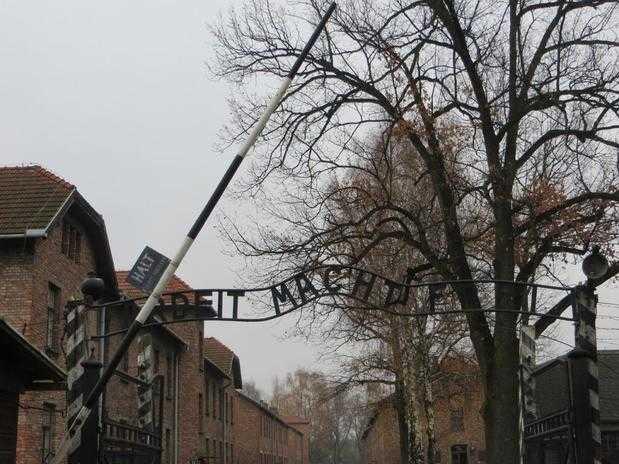 brama wjazdowa podczas wycieczki z Krakowa po Auschwitz