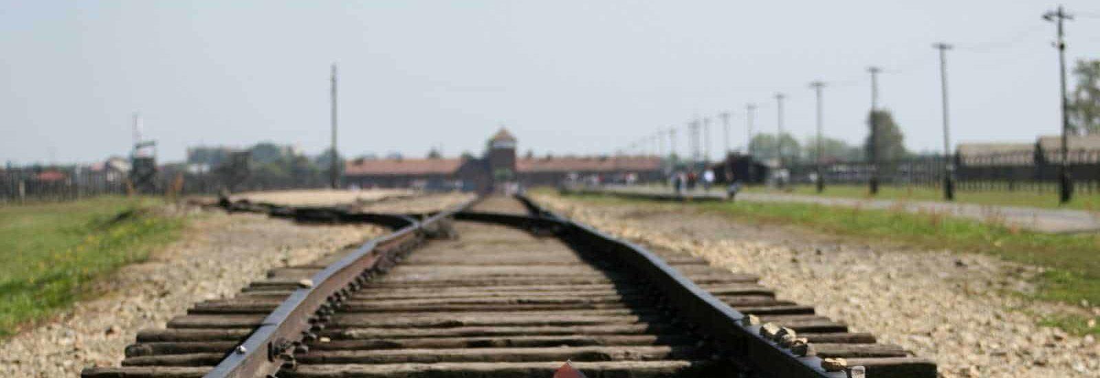 tory podczas wycieczki z Krakowa po Auschwitz